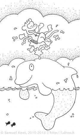 Beluga Bounce
