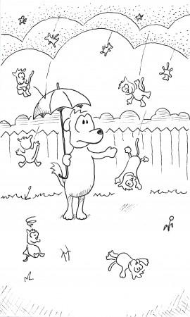 Raining Cats and Cats