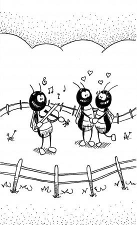 Cricket Serenade