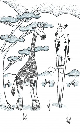 Not a Giraffe