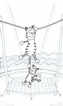 Tightrope Tiger