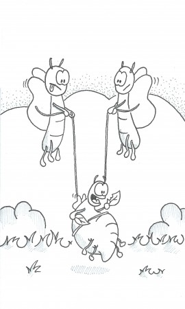 Help Him Fly